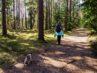 Kvinde går tur med sin hund i skov