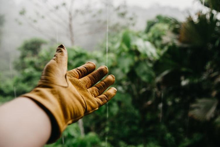 Udendørs handske