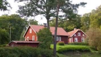 hus, bolig, hjem, hytte, skov, natur